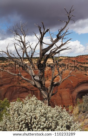 Historical Relic - Navajo Monument. Prehistoric cave in a giant canyon of red sandstone - stock photo