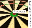 Hitting a conceptual bulls-eye that represents a business, finance, or personal target - stock photo