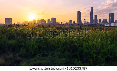 Ho Chi Minh city over the sunset with beauriful Cortaderia Selloana field.