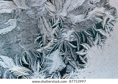 hoafrost - stock photo