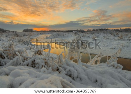 Hoarfrost on a grass at the river. Winter's Tale. Sunset in the winter - stock photo