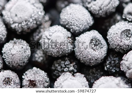 Hoarfrost on bilberries galore - stock photo