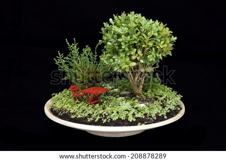 hobby tree in the garden with table and chair - stock photo