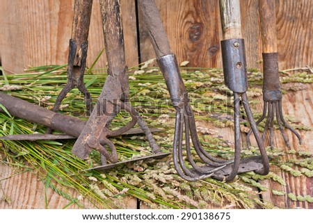 hoes and mattocks - stock photo
