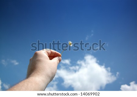 Holding a flower into the sky