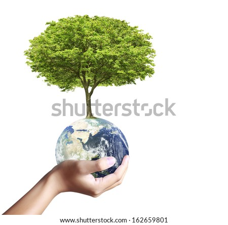 holding a glowing earth (NASA) globe and tree in his hand  - stock photo