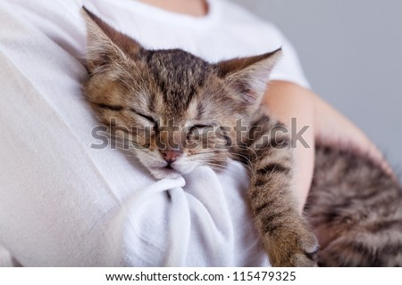 Holding a new pet - a little kitten sleeping on child arm - stock photo