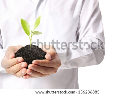 holding green plant in the hand  - stock photo