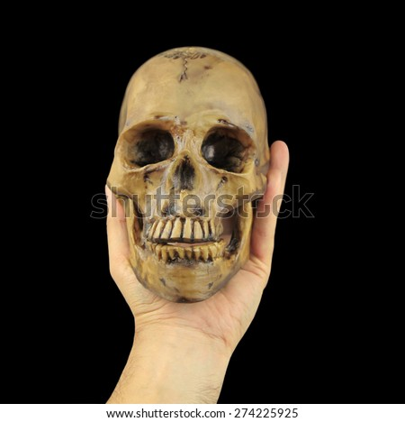 Hamlet Skull Stock Images, Royalty-Free Images & Vectors ...