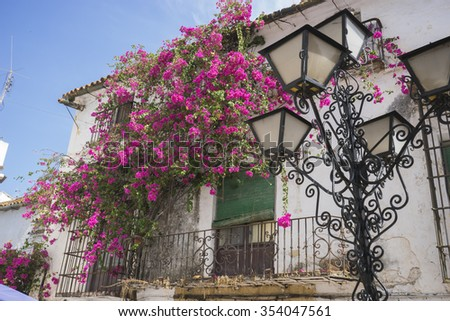 Holiday, architecture and streets of white flowers in Marbella Andalucia Spain