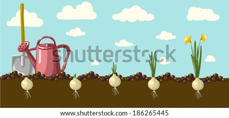 Holiday background with colorful flowers. illustration. - stock photo