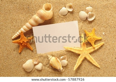 holiday beach concept with shells, sea stars and an blank postcard - stock photo