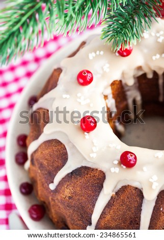 Holiday bundt cake decorated with icing and cranberry - stock photo