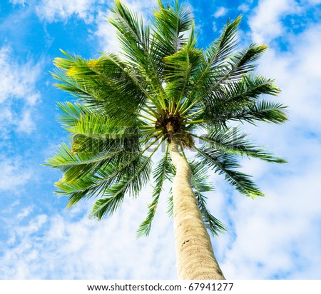 Holiday View - stock photo
