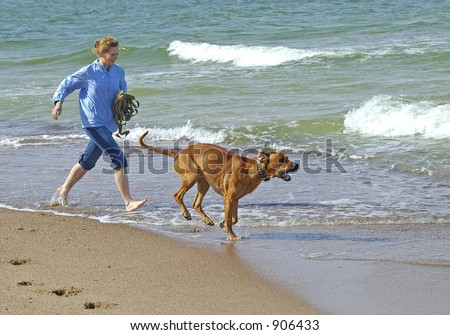 Holidays wih dog in Baltic - stock photo