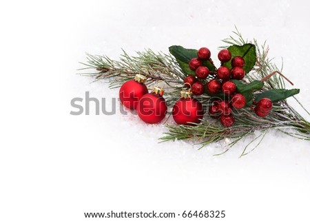 Holly and berries with a snow background, holly and berries background - stock photo