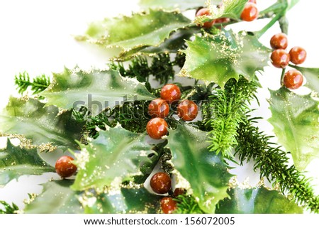 Holly berry plant with red berries on white background, Christmas decoration. - stock photo