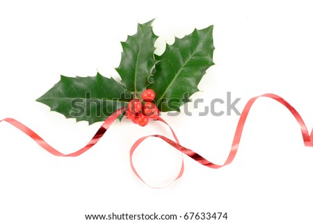 Holly (Ilex aquifolium) isolated on white - stock photo