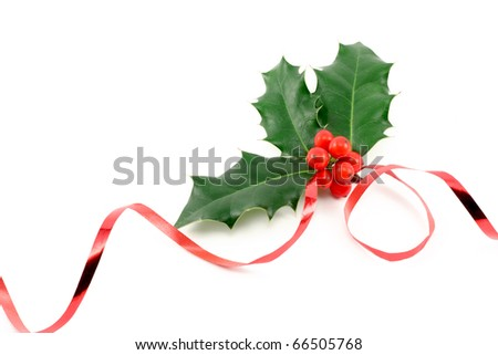 Holly (Ilex aquifolium) isolated on white with ribbon - stock photo