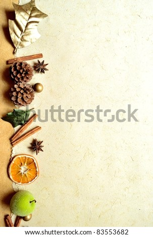 Holly leaf and fruit.Christmas image. - stock photo