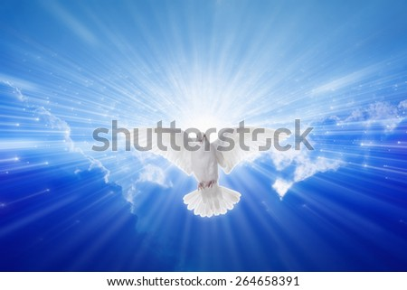 Holy spirit dove flies in blue sky, bright light shines from heaven, christian symbol, gospel story - stock photo