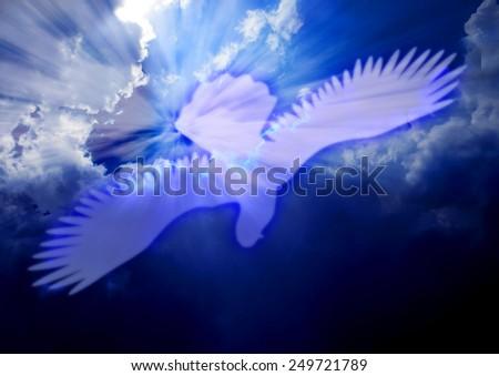 Holy Spirit dove-power in the holy spirit - stock photo