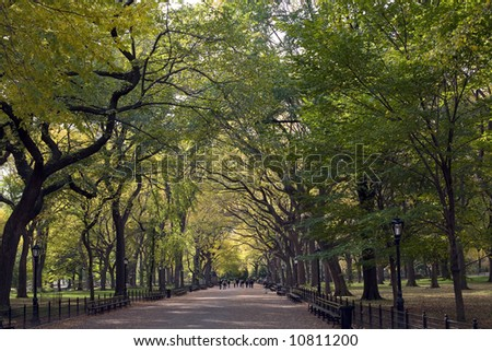 Home alley Central Park, New York City - stock photo