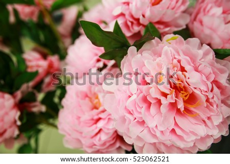 Home decor with peony