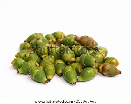 home decorated plant fruits, green young betel palm fruits falling from the trees on white background