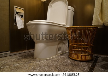 Home flush toilet - stock photo