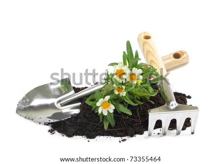home gardening - stock photo
