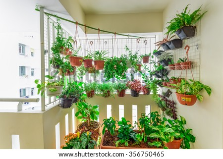 Home grown flowers and herbs in the hanging pots at balcony at Ang Mo Kio area. Growing a garden in a sharing apartment's balcony/corridor is popular in Singapore. Great for urban farm publications  - stock photo