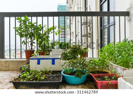 Balcony Garden Stock Images Royalty Free Images Vectors
