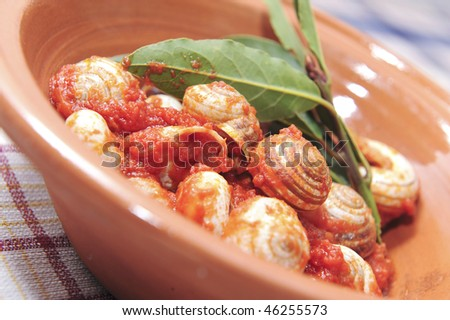 Home made italian cuisine, a dish of snails served in a farm holidays - stock photo