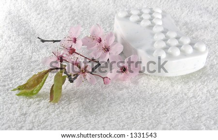 home spa - stock photo