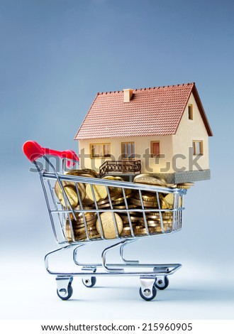 Home up for sale in a shopping trolley - stock photo