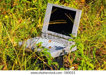 Homegrown Computer - stock photo
