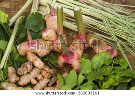 Homegrown medicinal plants in the vegetable garden,galangal, lemongrass, lime leaves, ginger - stock photo