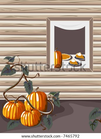 Homegrown pumpkins at a warm and inviting country home.  Inside pumpkin pie is being served! - stock photo