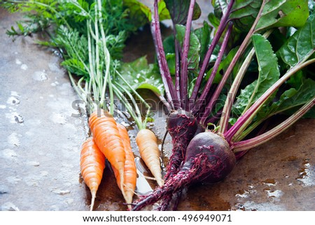 Homegrown root vegetables - Beet and carrots on a brown wooden background