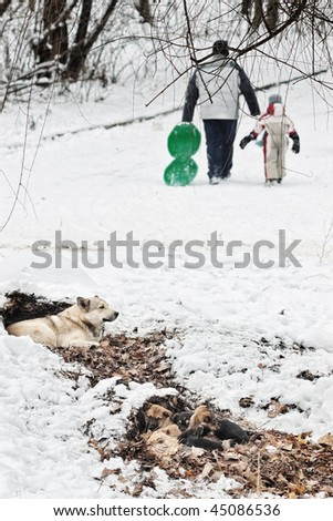 Homeless dog with small puppies getting warm in leaves in winter with blurred father and son figures - stock photo