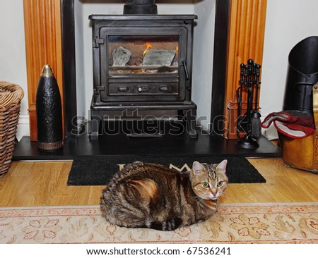 Homely scene of a Tabby Cat sitting on a rug in front of a blazing wood-burning stove - stock photo