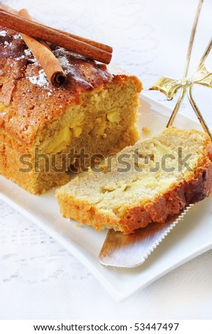 homemade apple cake with cinnamon - stock photo