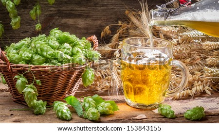 Homemade beer made of fresh hops - stock photo