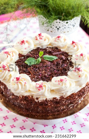 Homemade Black Forest cake with cherry and chocolate - stock photo