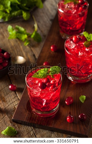 Homemade Boozy Cranberry Cocktail with Vodka and Mint - stock photo