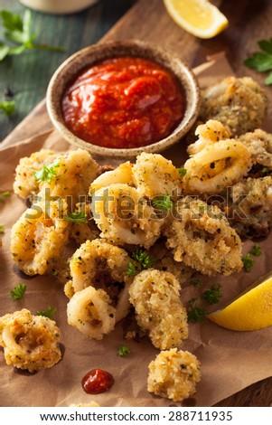 Homemade Breaded Fried Calamari with Marinara Sauce - stock photo