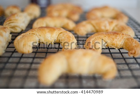 Homemade buttery croissants mini size