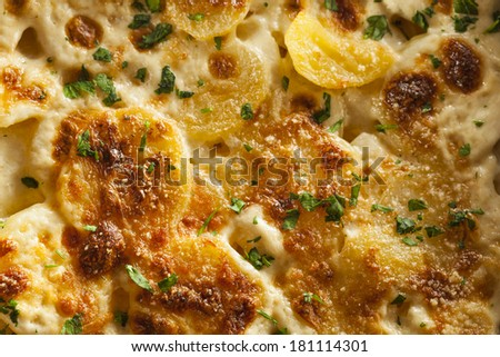 Homemade Cheesey Scalloped Potatoes with Parsley Flakes - stock photo