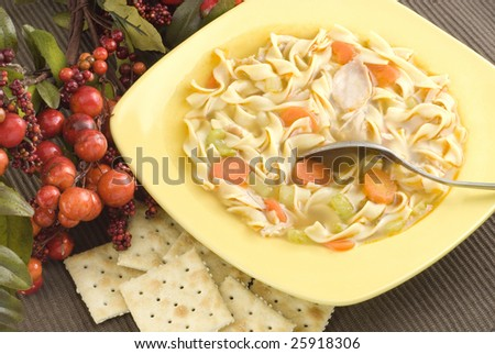 Homemade Chicken Noodle Soup with Crackers and copy space - stock photo